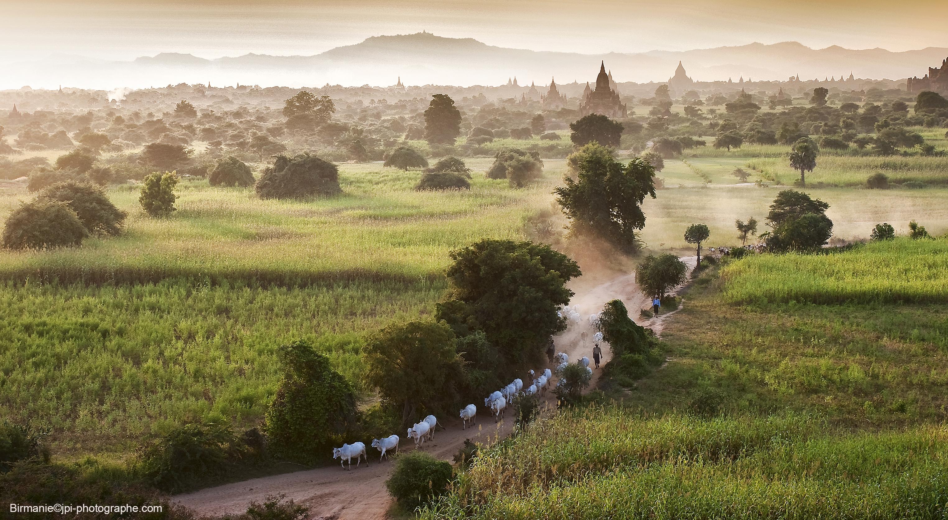Myanmar Birmanie photo paysage Bagan